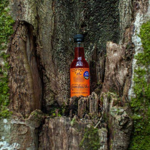 Raspberry-and-turmeric-kombucha-in-a-tree-trunk